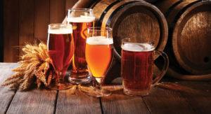 village-brewhouse-beers